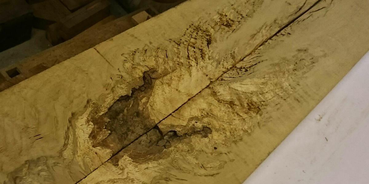 decayed oak boards