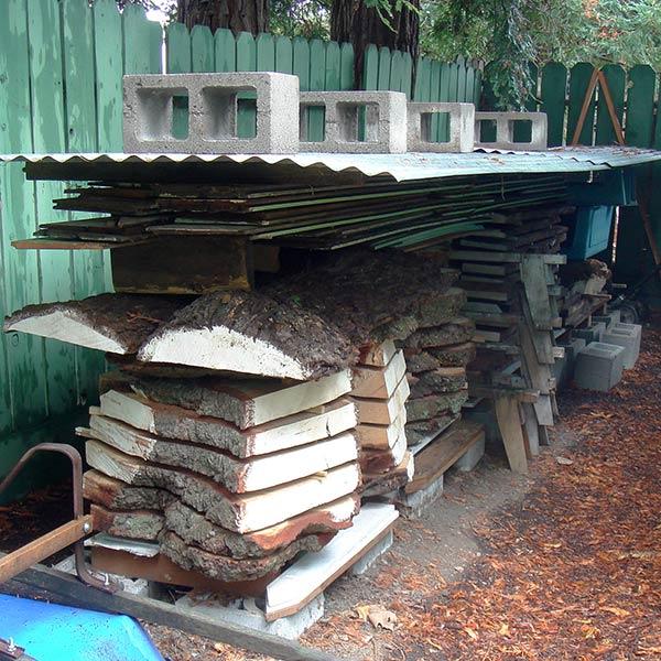 wood slabs drying in yard