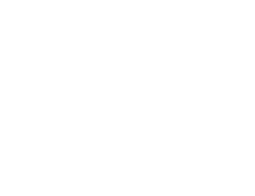 outline of woodworking tools